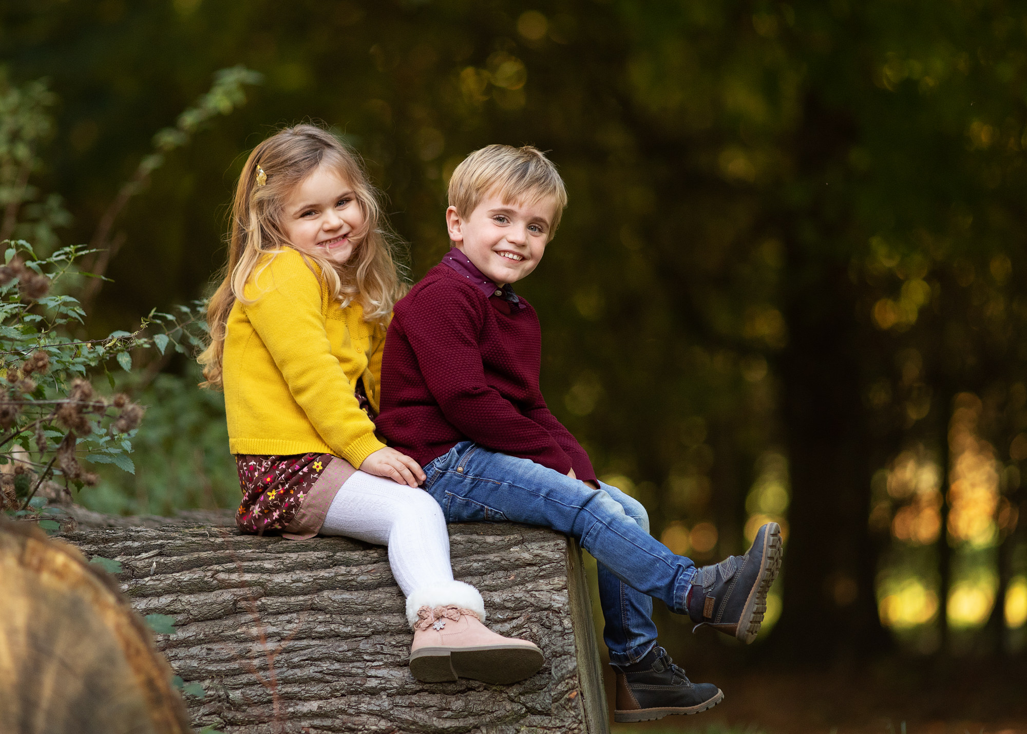 outdoor family photoshoot girl and boy sitting in tree