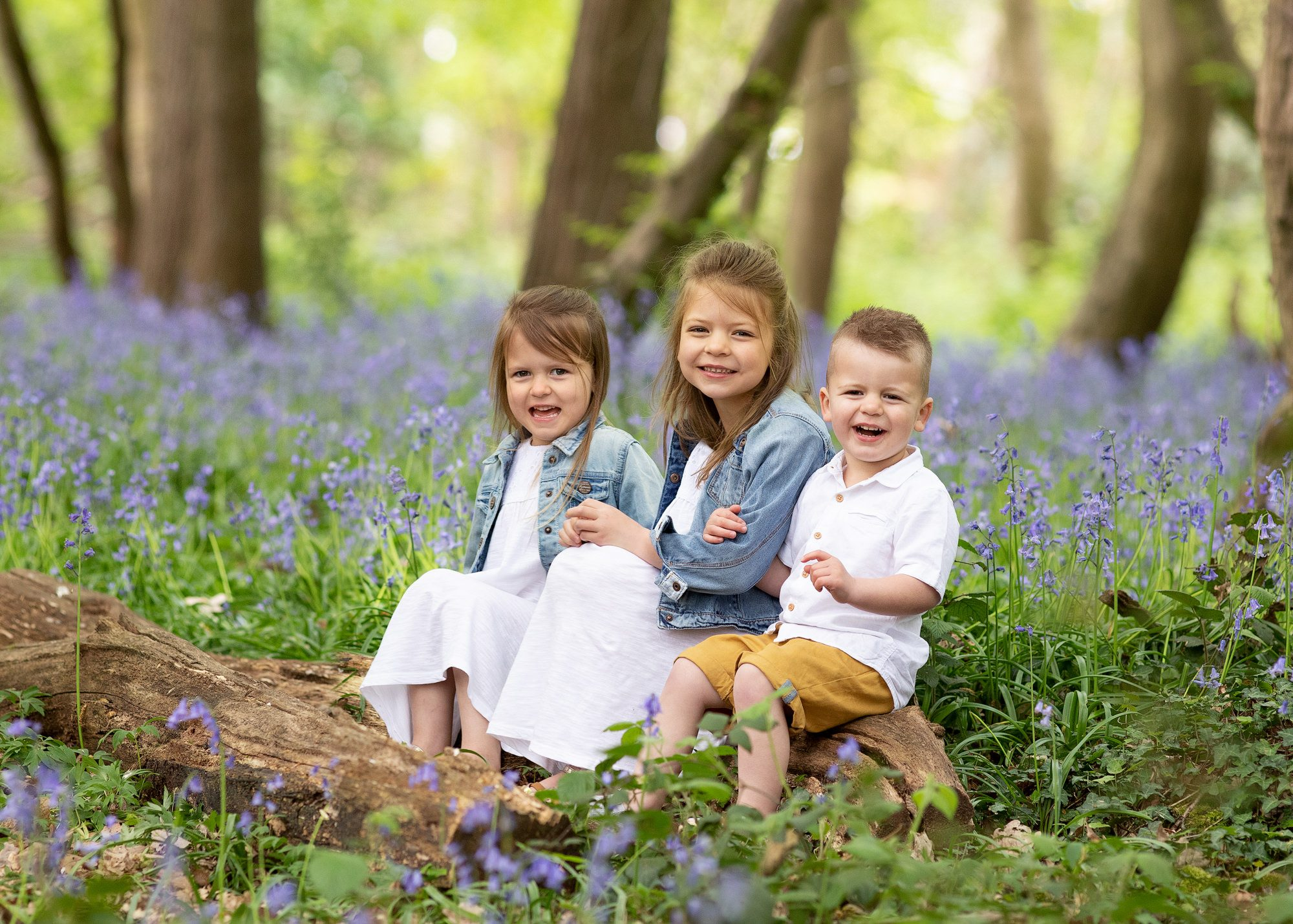kids sitting in the bluebell wood